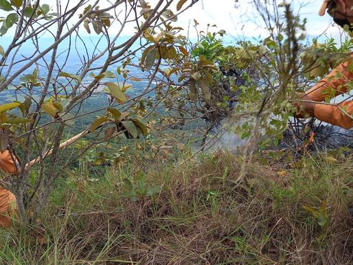 Más de 250 hectáreas de vegetación se vieron afectadas por incendios presentados el fin de seman