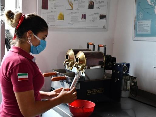 Cafeteros del sur del Tolima no paran sus procesos en medio del COVID-19
