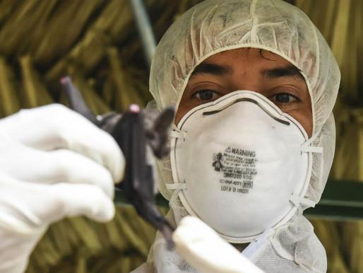 Se confirma el primer caso en Sudamérica de nueva cepa británica de covid-19