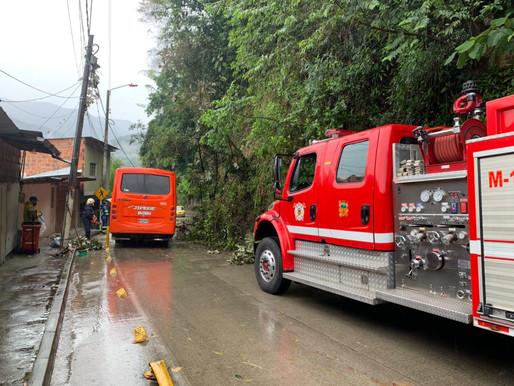 Organismos de socorro atendieron deslizamientos por lluvias en varios de sectores de Ibagué