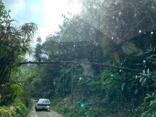 Autoridades atendieron emergencias por lluvias en Ibagué