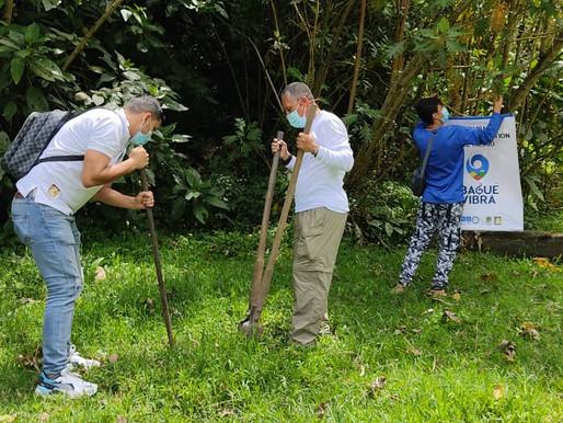 Sembraron en Ibagué más de 700 árboles durante la celebración del Día del Ambiente