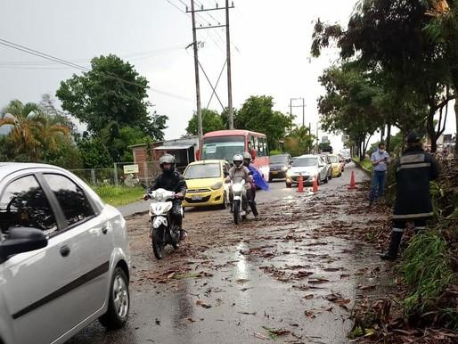 Alcaldía atendió emergencias por lluvias en Ibagué