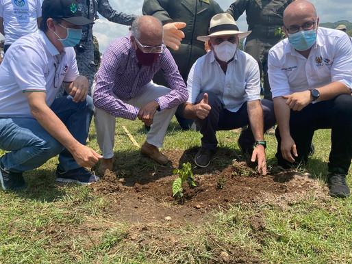 Continúa sembratón del Banco Agrario en el Tolima con la mayor siembra del país