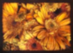 Painted color 2.jpg