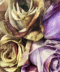 good color rose.jpg