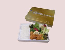2021/8/1~31 期間限定 プレミアム高原野菜とカツの弁当(¥1,400税込)