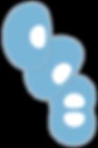 CCB logo_03.png