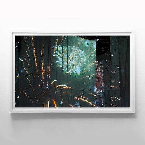 Elephant, B (2020), giclee fine art print