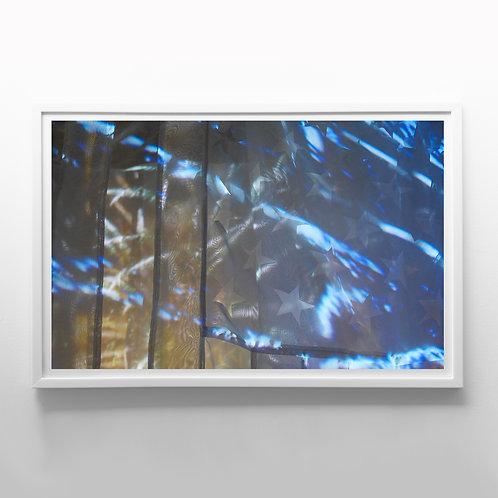 Elephant, G (2020), giclee fine art print