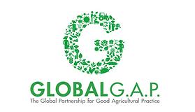 global-gap-1_1.png