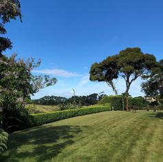Front lawn arch towards Napier