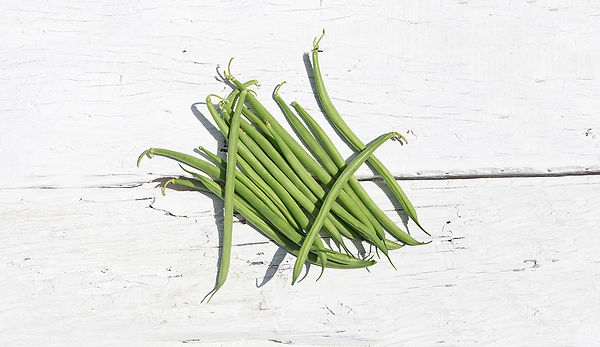 FRENCHBEANS-photo.jpg