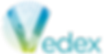Logo Vedex sin fondo(1).png