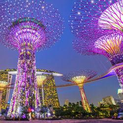 Singapore_IMG.jpg