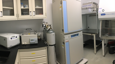 Building a Stem Cell Culture Facility