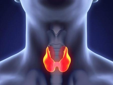 Hypothyroidism and bODYBUILDING