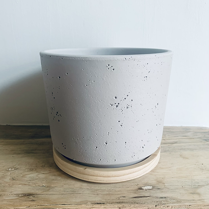 Concrete and Bamboo Pot