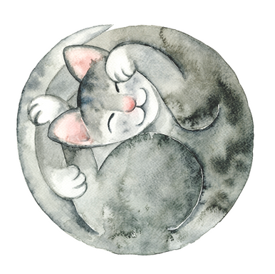 Kattsnark