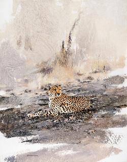 Cheetah - GH004