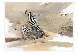 Zebras and Foal - GH007