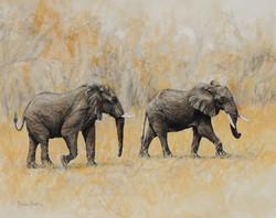 Elephant Jaunt