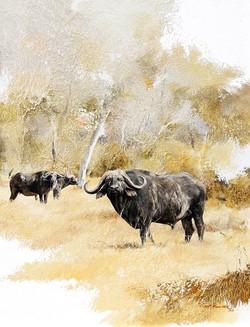 3 Buffalos- GH017