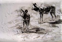 Monochrome Wilddogs