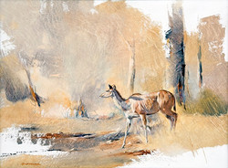 Kudu Female - GH019