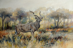 Kudu Bill
