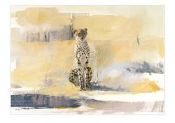 Cheetah - GH009
