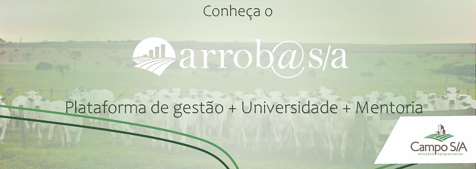 aRROBA2.png
