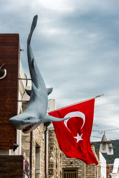 Juxtaposition - Bodrum, Turkey