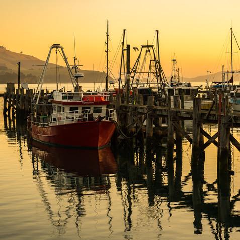 Port Chalmers at Dawn
