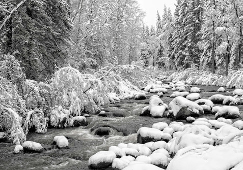 Creek and New Fallen Snow - Western Colorado
