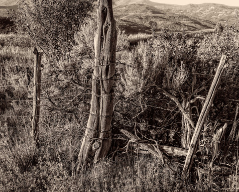 Old Fence and Sage - Plateau Valley, Colorado