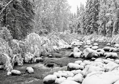 Creek and New Fallen Snow - Western Colorado