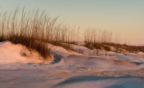 Sunrise on the Dunes Anestasia State Park, Florida