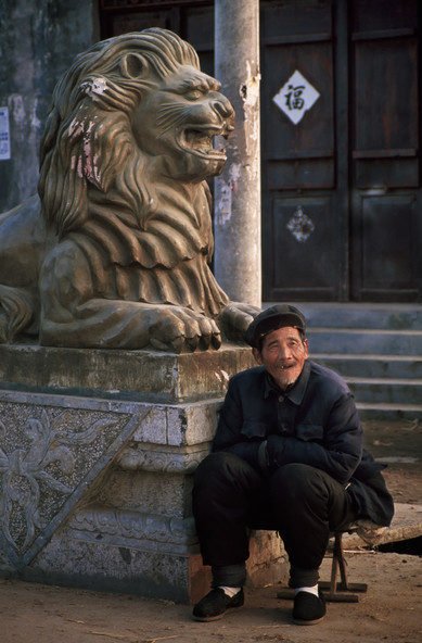 Toothless Lions - Qufu