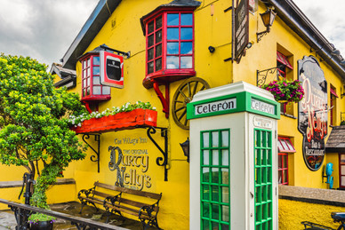 Famous Dirty Nelly's - Bunratty, County Clare