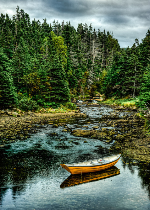 Dinghy and Forest - Broad Cove, Newfoundland