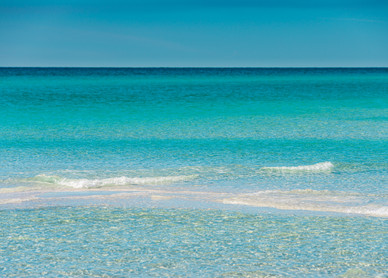 Shade of Blue - Topsail State Park, Florida