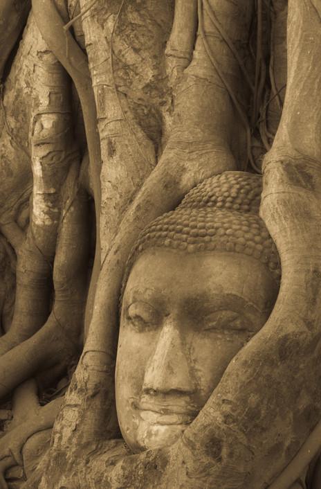 Iconic Ayutthaya