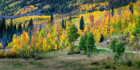 Fall Color Panorama - Sylvan Lake State Park - Eagle, Colorado