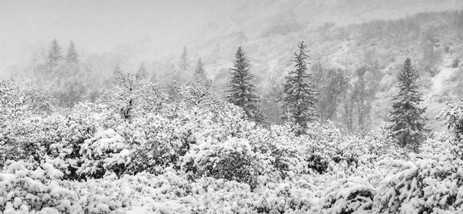 Spring Snowfall Panorama - Western Colorado