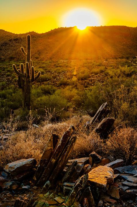 Sunset Along the Lost Dog Wash - Scottsdale
