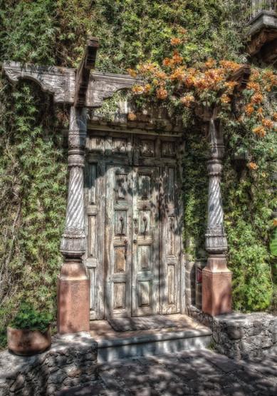 Vine Covered Doorway - San Miguel de Allende, Mexico