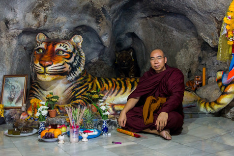 Inside the Tiger Cave, Wat Tham Sua - Krabi