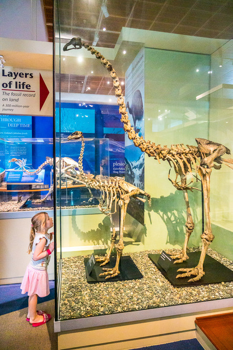 Little Girl and Moa Skeleton - Otago Mus