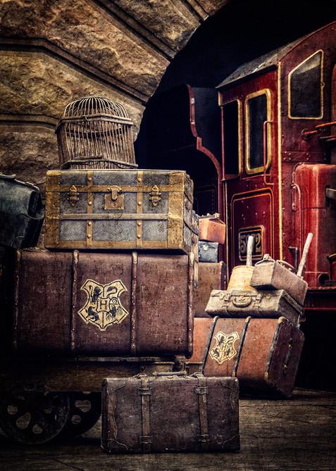 Awaiting the Hogwarts Express - Orlando, Florida